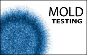 moldtesting-300x189